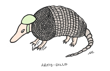 Armadillo_01