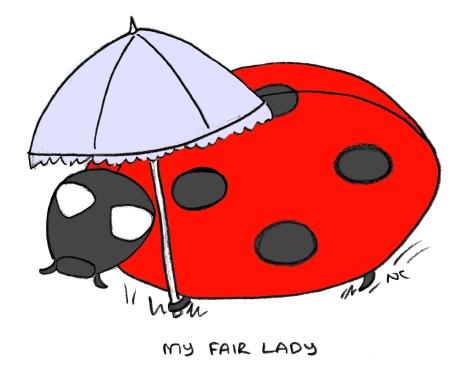 Ladybird_01